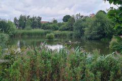 Joseph Rowntree Lake 1